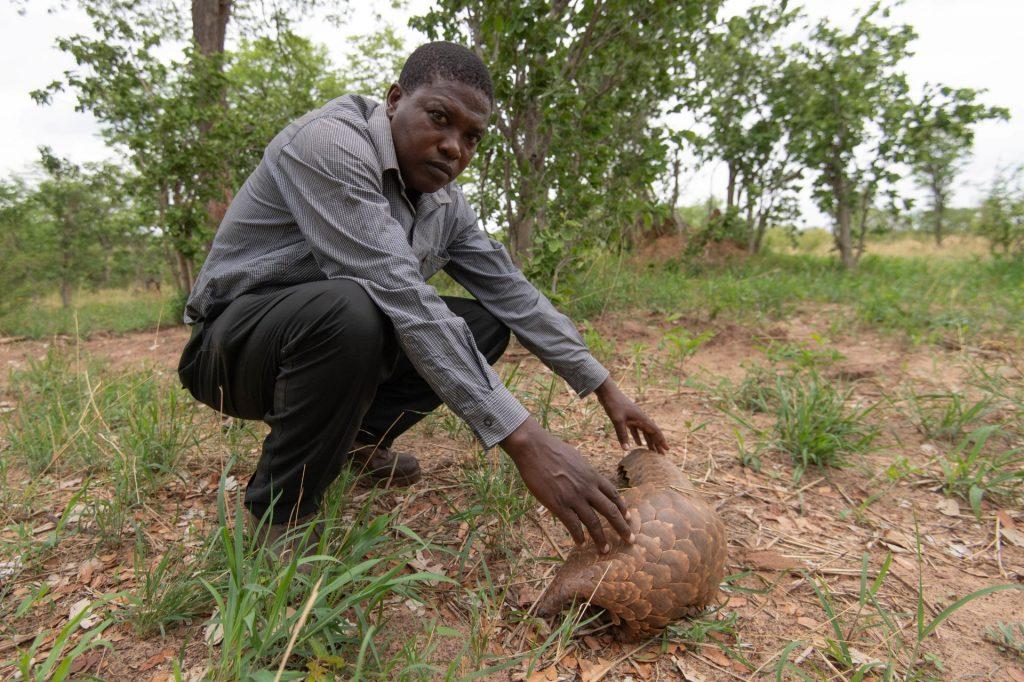 Amos Gwema - Zimbabwe | Tusk Wildlife Ranger Award Winner 2020