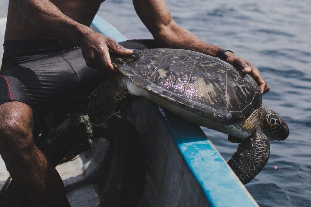 Hipólito Lima - São Tomé and Príncipe | Prince William Award for Conservation in Africa Winner 2020